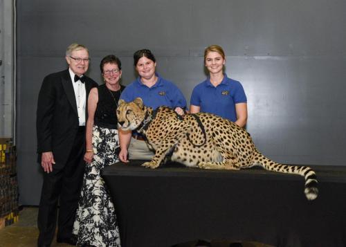 Cheetah 107
